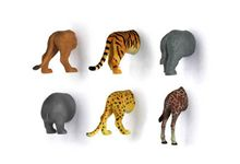 Set de 6 magnets arriere-train animaux safari